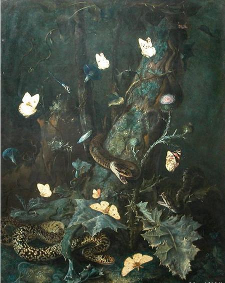 Otto-Marseus-van-Schrieck-serpents_et_insectes