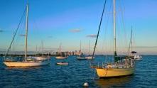 mooring_field_dinner_key_marina (3)