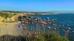 praias_rota_vicentina (26)